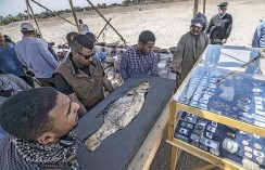 ??  ?? Workers carrying a fish covered in gold uncovered at the archaeological site of a 3000 year old city