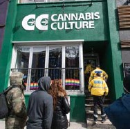 ?? AARON VINCENT ELKAIM/THE CANADIAN PRESS ?? A Beer Store approach to cannabis sales would allow provincial oversight but also guarantee knowledgeable personnel manning the counters, Ross Reynolds writes.