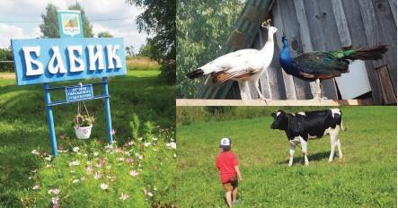 ??  ?? В деревне есть и собственный музей, и даже «зоосад» с павлинами.