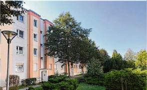 ??  ?? Der Fundort: Die Häuser in der Neuen Vogelsdorfer Straße in Rüdersdorf, wo die Mauersegler brüten. Auch durch die Büsche ist Amy gekrochen.