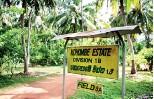 ??  ?? A model of sustainability: Ray's Kohombe estate