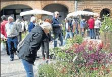 ??  ?? Les visiteurs se laissent séduire par les nombreux plants