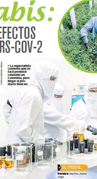 ??  ?? > La especialista comenta que es fácil producir cannabis en Colombia, pero llegar al producto final no.