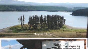 ??  ?? Mosquito Island