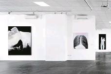 ?? FOTO MARTIN POLÁK ?? Surrogate Josefa Žáčka v Galerii Bold
