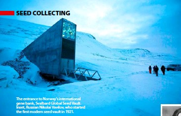 ??  ?? The entrance to Norway's international gene bank, Svalbard Global Seed Vault. Inset, Russian Nikolai Vavilov, who started the first modern seed vault in 1921.