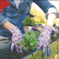 ?? GETTY IMAGES/ISTOCKPHOTO ?? If you have a balcony or porch, you may be able to enjoy some gardening time while continuing social distancing.