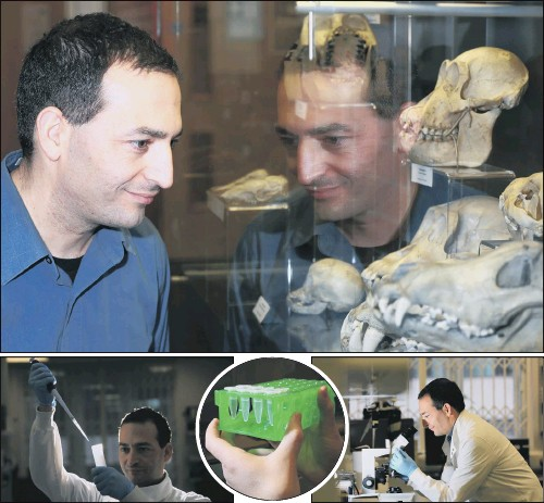?? PICTURES: CHRIS ETCHELLS. ?? GENE GENIE: Dr Eran Elhaik, the academic behind the new public website, at work in his lab at Sheffield University's department of animal and plant sciences.