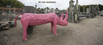 ??  ?? De roze neushoorn.