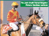 ?? The Justin Snaith-Trained Belgarion Picture: Candiese Lenferna ??
