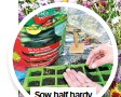??  ?? Sow half hardy annuals undercover