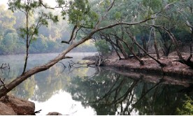?? Photograph: Russell Shakespeare/AAP ?? The Wenlock River at the Steve Irwin Wildlife Reserve. A portion of Cape York land handed to traditional owners is classified national park and protected, but about half is granted as 'freehold' and remains at the mercy of mining companies.