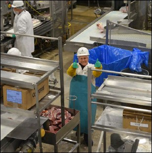 ??  ?? One World Beef employee Rosa Martinez is one of more than 100 employees that Chief Executive Officer Eric Brandt credits for the beef processing facility's unique culture and continued success. PHOTO BY JULIO MORALES