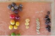 ?? Foto links: Von der Kirsche bis zum Röstkaffee ??