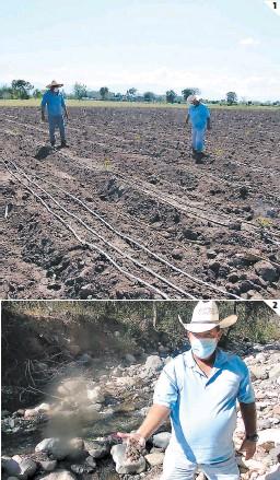 ?? FOTOS: EL HERALDO ?? (1) Unas 300 manzanas de tierra cultivadas son afectadas. (2) Los filtros y cintas de riego son obstruidos por sedimento de aguas mieles.