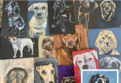 ??  ?? ABOVE AND RIGHT: Some of the dog portraits painted for Sue Ryder hospice in Leckhampton