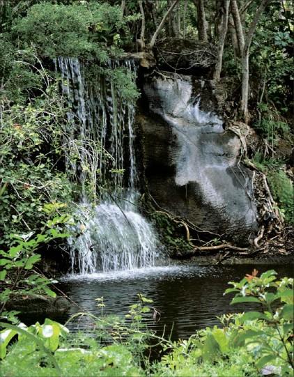 ?? PHOTOS BY MARJIE LAMBERT/MIAMI HERALD ?? Waterfalls at Garden of the Groves are among visual treasures on Grand Bahama.