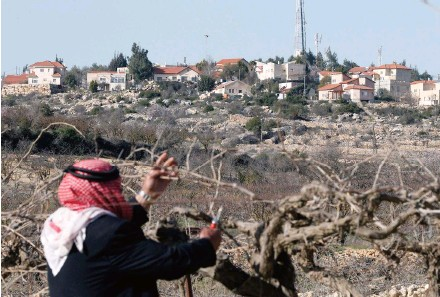 ??  ?? A Palestinian man prunes the branches of his vines in the West Bank village of Beit Omar, north of Hebron, with the Israeli settlement of Karmei Tzour in the background.