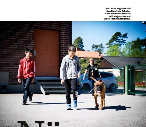 ??  ?? Alexander Bognandi och Sam Najafzade Zabielny hämtar bokhunden Bonzo inför dagens lässtund på S:t Pers skola i Sigtuna.