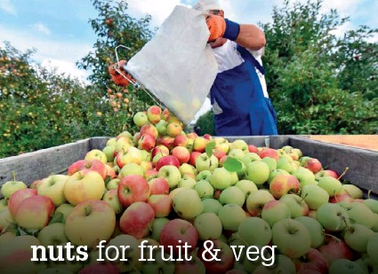 ??  ?? Left: Apples have had two years of double-digit value growth despite two years of slight reductions in volume, Hort Innovation head of data and insights Adam Briggs says