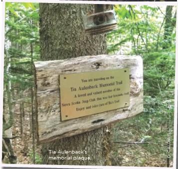 ??  ?? Tia Aulenback's memorial plaque.