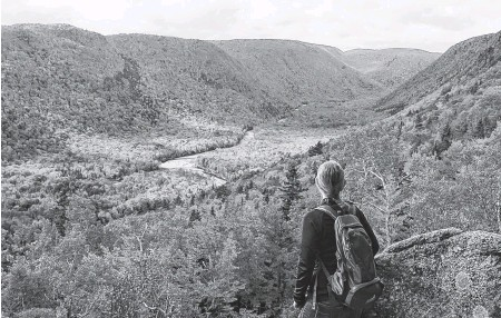?? PARKS CANADA ?? The Cape Breton Highlands National Park is among the most popular spots for tourists to visit in Nova Scotia.