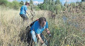 """??  ?? Voluntaris de """"la Caixa"""" realitzen tasques per preservar l'entorn"""