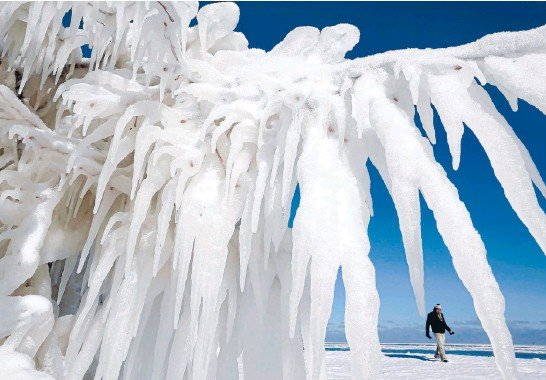?? Photo: REUTERS ?? Shivers!: An ice-covered tree by Lake Michigan in Chicago, Illinois. More than 30 centimetres of snow fell in the Chicago area yesterday.