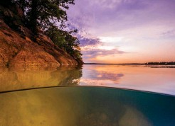??  ?? Certs are on the rise this summer in unexpected places—Oklahoma, anyone? We give you the skinny on the Sooner State on page 94; at new features will help you find out where to dive, wherever you are.