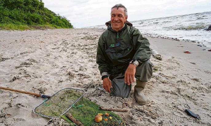 ?? Fotos: MOZ/Stefan Klug ?? Erfolgreicher Fischzug: Igoris Osnac am Strand in der Nähe von Klaipeda (Memel). Der Bernsteinexperte holt immer ein paar Nuggets aus der Ostsee.