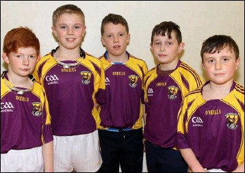Mylie Connors Cian Doyle Bobby Doyle Eoin Roche And Conor Horan Were Among The Wexford Representatives In The Recent Leinster Juvenile Championship