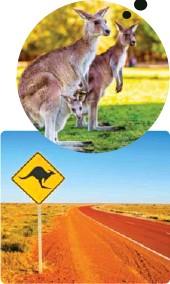 ??  ?? Langs veiene i Australia er det skilt som advarer mot at det kan komme kenguruer hoppende ut i veien.