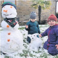 ??  ?? • Daisy, 3, and Ronnie, 2, Armstrong from Newchurch
