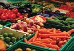 ?? FOTO: MOSTPHOTOS ?? Den som äter palsternackor hjälper till att rädda klimatet.