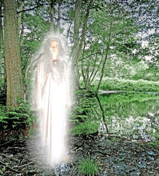 ?? Cannock Chase ?? There have been many sightings of a ghostly young woman near Seven Springs,
