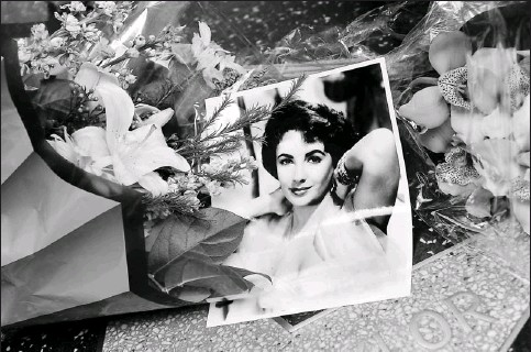 ?? By Mark Ralston, AFP/Getty Images ?? 1932-2011 The violet-eyed icon: Fans surrounded Elizabeth Taylor's star on the Hollywood Walk of Fame with flowers and photos Wednesday after the news of her death.