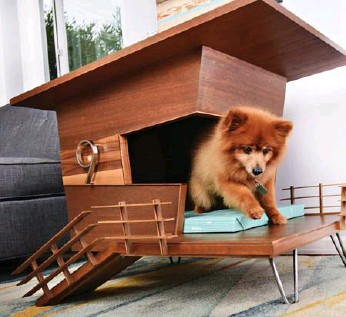 ?? WILLIE ROMERO PHOTOS ?? This playful pup adores the stylish veranda of the Dog Tower 9 doghouse, which doubles as an end table.