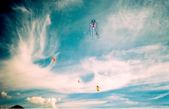 ??  ?? Shimabuku. « When Sky Was Sea ». 2002. (Court. de l'artiste et Air de Paris). [Cosmogonies intérieures]