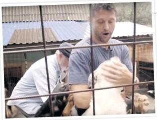 ??  ?? Azil u Prači Mnoge su snimke koje su nastale unutar azila, na kojima su bolesni i mrtvi psi, psi koji se bore, morali po naredbi iz azila uništiti