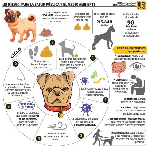 Giardia en perros zoonosis
