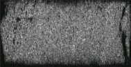 ??  ?? Fig.6 图6 动态压缩试件的微观组织形貌Microstructure morphology of dynamic compression test specimen (d)应变率为5 200 s-1