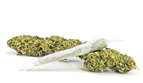 ?? PHOTO: ODT FILES ?? The Act's requirements dictate that legal cannabis retailers can only grow by stimulating cannabis demand, which means promoting and marketing it.