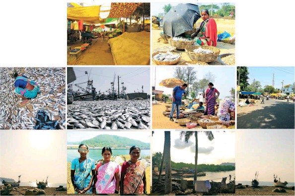??  ?? This page:A large number of the inhabitants of Karwar are engaged in fishing and other subsidiary occupations Opposite page: An illustration depicting the various socio-cultural cycles in Karwar through the year