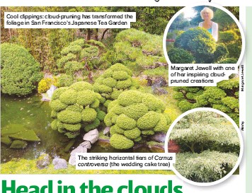 Pressreader Amateur Gardening 2018 09 29 Head In The Clouds