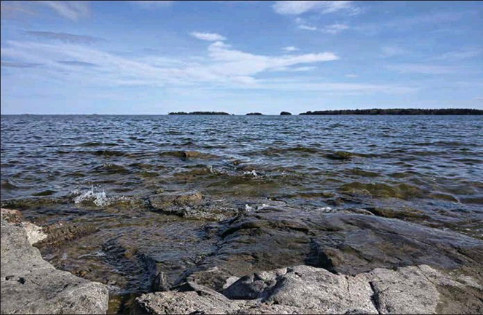 ?? ARI SUNDBERG/SPT ?? BAKTERIER FRODAS. För tillfället förekommer vibriobakterier i hög grad i så gott som hela Östersjön.