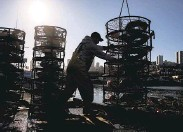 ?? Jessica Chris­tian / The Chron­i­cle 2019 ?? Lan­don Car­pen­ter with the boat Ken­dra Jean loads crab traps for the open­ing of the 2019 crab sea­son.