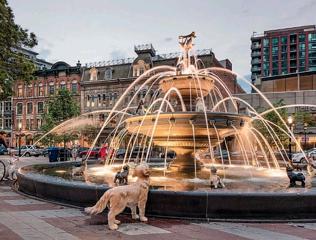 ??  ?? The redesign of the small park at the intersection of three districts in Toronto focuses on the creation of a square with a fountain. The element of fun, verging on kitsch, is added by a set of life- size figures of dogs spurting water out of their mouths