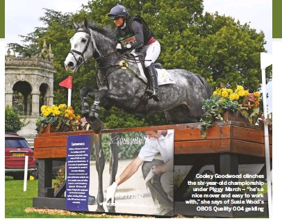"""??  ?? Cooley Goodwood clinches the six-year-old championship under Piggy March – """"he's a nice mover and easy to work with,"""" she says of Susie Wood's OBOS Quality 004 gelding"""