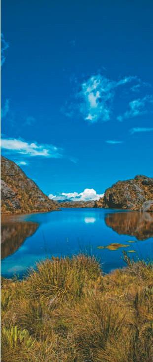 ??  ?? Entre los departamentos de Santander y Norte de Santander se encuentra el páramo de Santurbán, situado entre los 3.100 y los 4.290 metros sobre el nivel del mar.