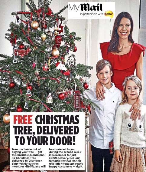 you during the second week in december for just 999 delivery see our fantastic reviews on this tree offer from last years happy customers right - Does Mail Get Delivered On Christmas Eve